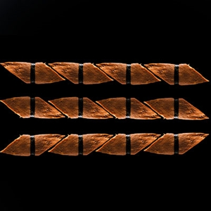 658. Tamago Nigiri Set (12 Adet)