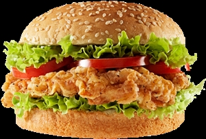 Southern Chicken Burger