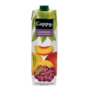 Cappy Karışık Meyve Nektarı (1 L.)