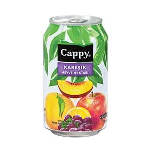Cappy Karışık Meyve Nektarı (33 cl.)